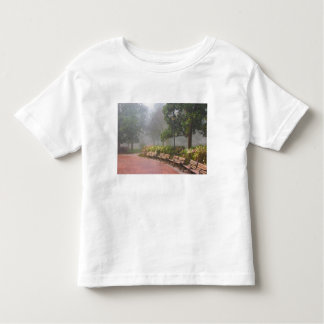 GA Savannah, Azaleas along brick sidewalk and T Shirt