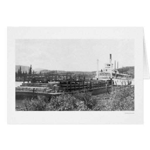 Gabarra el río Yukón 1914 del ganado Tarjeta De Felicitación
