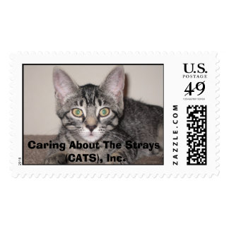 Gabby the gorgeous tabby postage