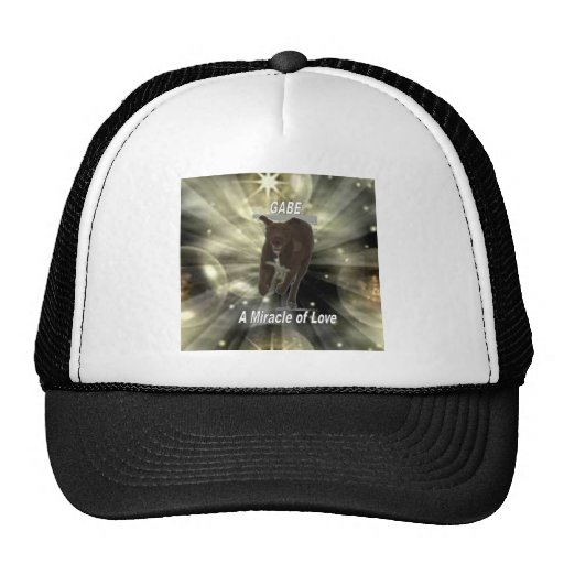 Gabe, A Miracle of Love Mesh Hat
