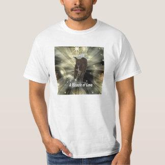 Gabe Miracle Tee Shirt