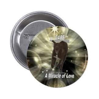Gabe, un milagro del amor pins