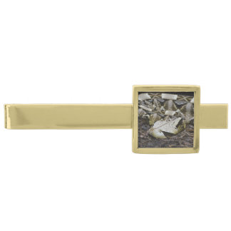 Gabon Viper Gold Finish Tie Clip