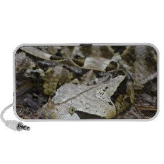 Gabon Viper Portable Speakers