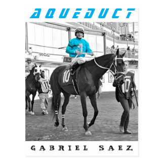 Gabriel Saez-Foxhall Drive Postcard