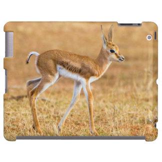 Gacela nuevamente llevada (marsupiales del funda para iPad