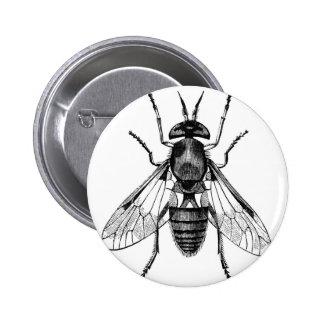gadfly vintage illustration 2 inch round button