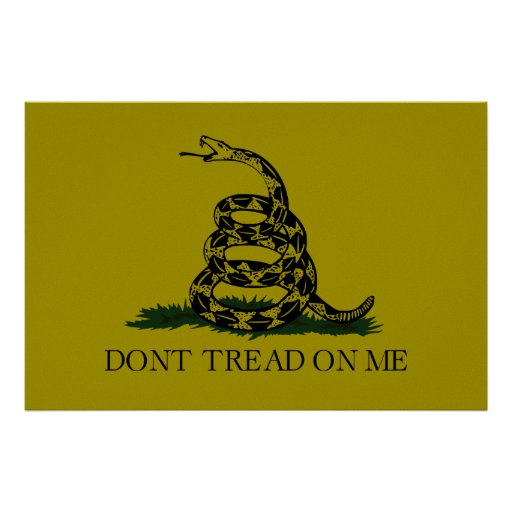 Gadsden (Dont Tread On Me) Flag Textured Matte Poster