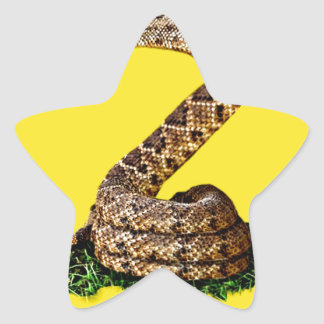 Gadsden Flag 2013 - Don't Tread on Me (Square) Stickers