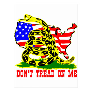 Gadsden Snake Don't Tread On Me w/ American Flag Postcard