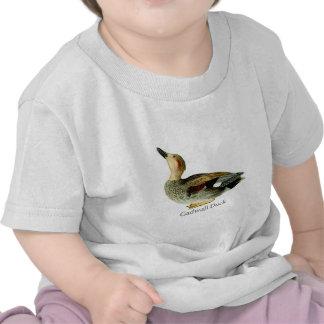 Gadwall Duck. Tshirt
