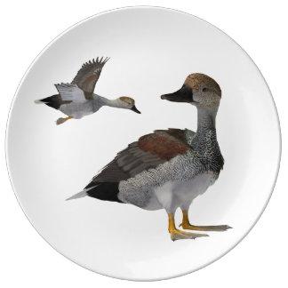Gadwall Plate Porcelain Plate