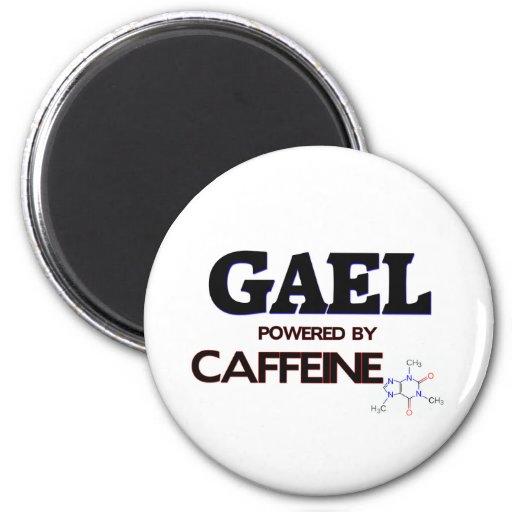 Gael accionó por el cafeína imán para frigorífico