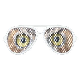 Gafas de sol divertidas del ojo del búho lentes de sol