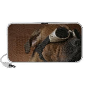 Gafas de sol que llevan 2 del perro portátil altavoz
