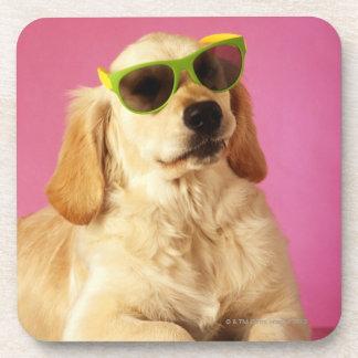 Gafas de sol que llevan 2 del perro posavasos de bebidas