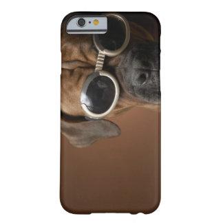 Gafas de sol que llevan 3 del perro funda para iPhone 6 barely there