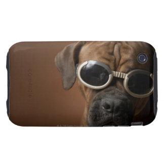 Gafas de sol que llevan 3 del perro tough iPhone 3 cobertura