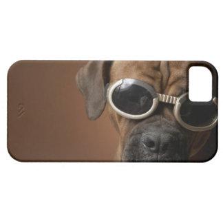 Gafas de sol que llevan 3 del perro funda para iPhone 5 barely there