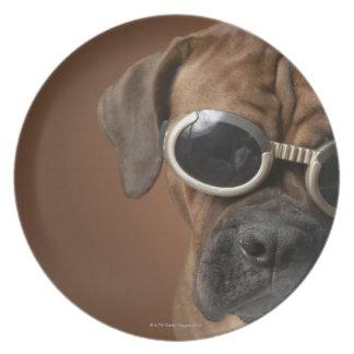 Gafas de sol que llevan 3 del perro plato de cena
