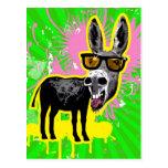 Gafas de sol que llevan del burro postales