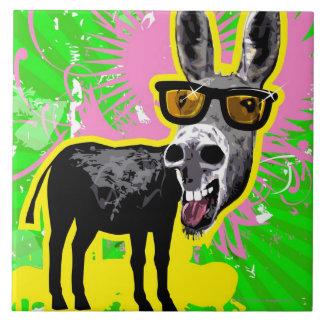 Gafas de sol que llevan del burro tejas