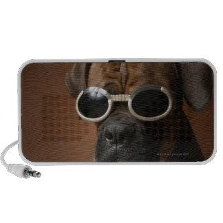 Gafas de sol que llevan del perro altavoz de viaje