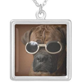 Gafas de sol que llevan del perro colgante cuadrado