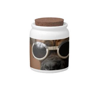 Gafas de sol que llevan del perro jarras para caramelos