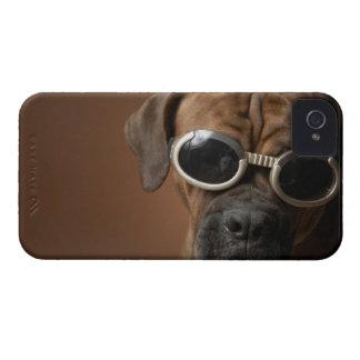 Gafas de sol que llevan del perro iPhone 4 Case-Mate protector