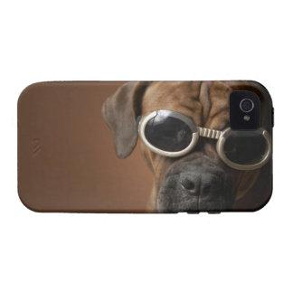 Gafas de sol que llevan del perro Case-Mate iPhone 4 carcasas