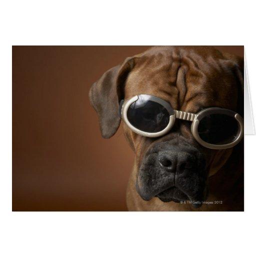 Gafas de sol que llevan del perro tarjeta de felicitación