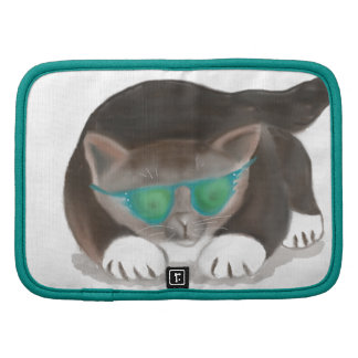 Gafas de sol y gatito planificadores