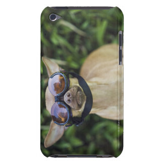 Gafas que llevan de la chihuahua iPod touch carcasa