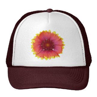 Gaillardia 1 trucker hat