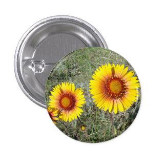 Gaillardia amarillo de los Wildflowers F0017 Pin Redondo De 1 Pulgada