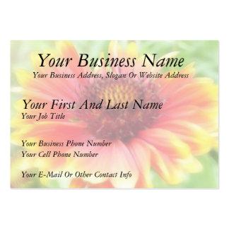 Gaillardia Bloom Up Close Business Card