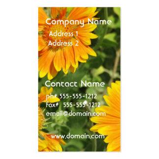 Gaillardia Flowers Business Card
