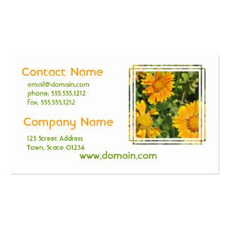 Gaillardia Flowers Business Cards
