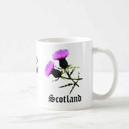Gaitero de Escocia, cardo de la flor Tazas De Café