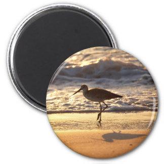 gaitero de la arena en diseño de la playa iman de frigorífico