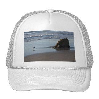 Gaitero de la arena en la playa gorro de camionero