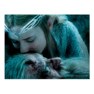Galadriel Kisses Gandalf Postcard