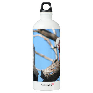 Galah Aluminum Water Bottle
