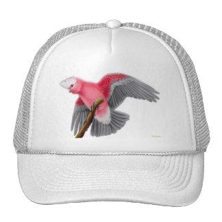 Galah Cockatoo Hat