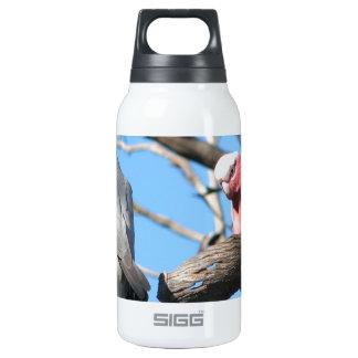Galah Thermos Bottle