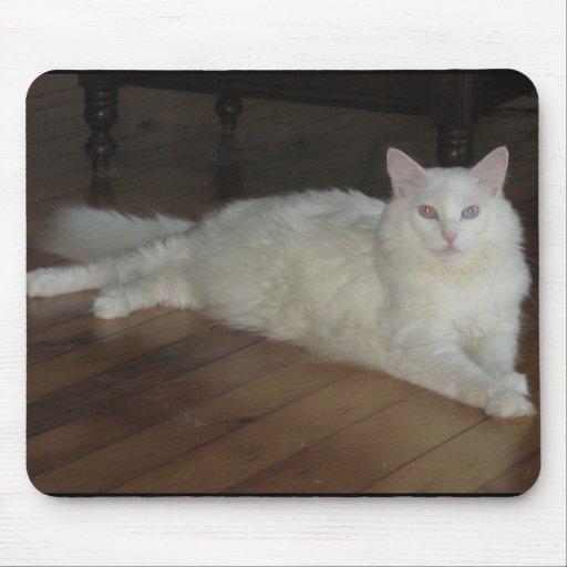 Galán el gato turco Mousepad del angora Alfombrilla De Ratón