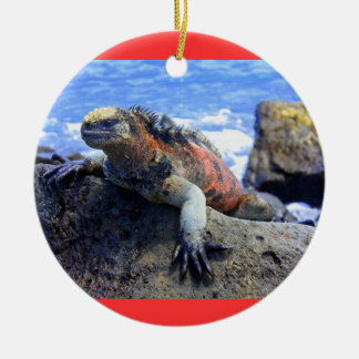Galapagos Ceramic Ornament