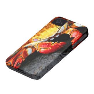 Galapagos Crab iPhone 4 Cover