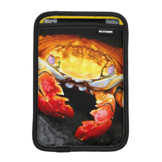 Galapagos Crab Sleeve For iPad Mini